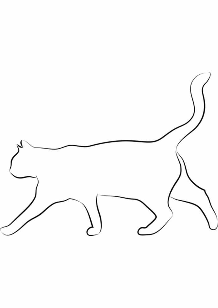 gato para colorir borda