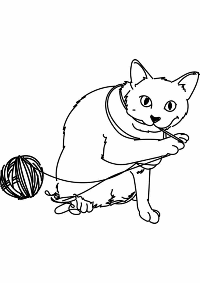 gato para colorir comendo novelo de lã
