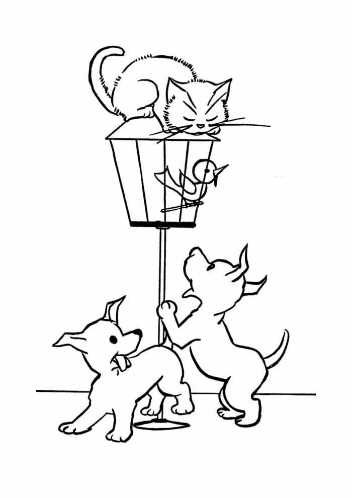 gato para colorir encima gaiola