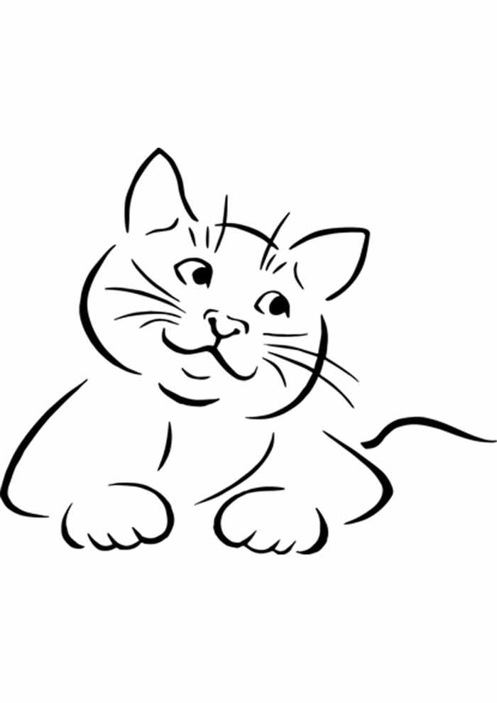 gato para colorir fofo olhando para o lado