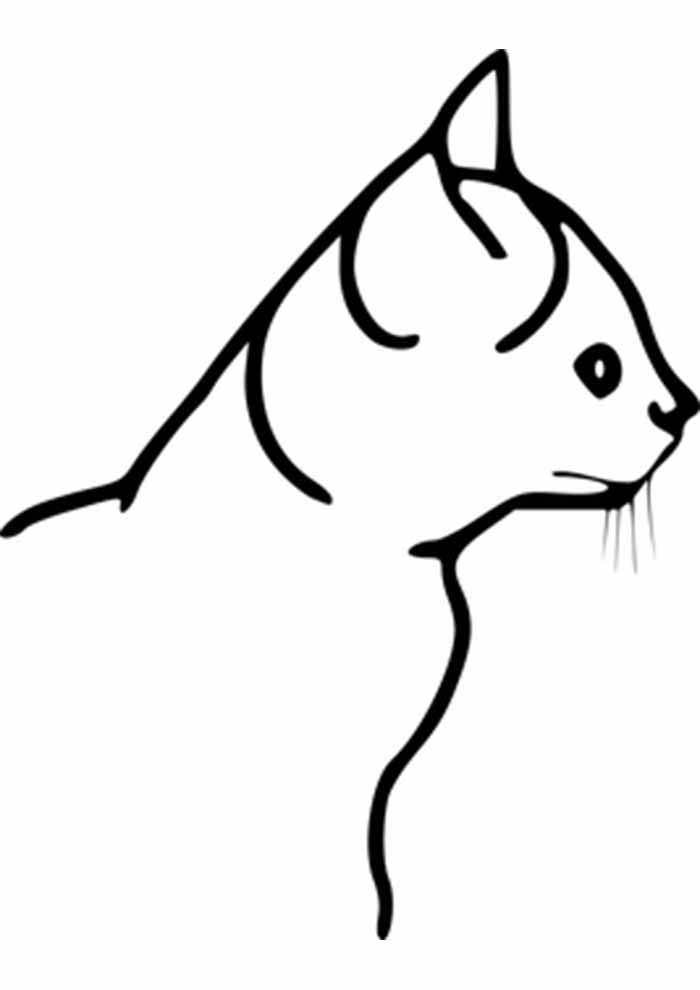 gato para colorir perfil