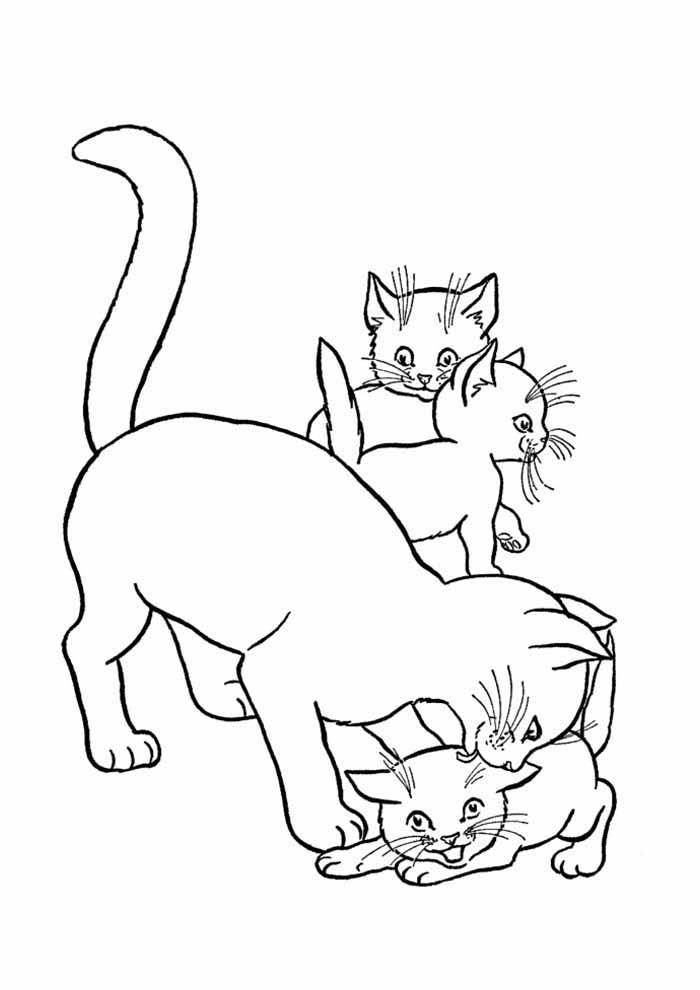 gatos para colorir mae e filhos