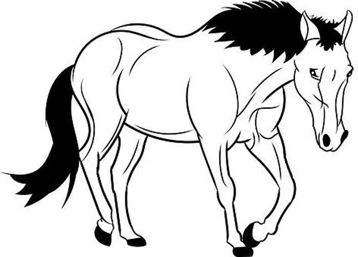 Imagem cavalo para colorir