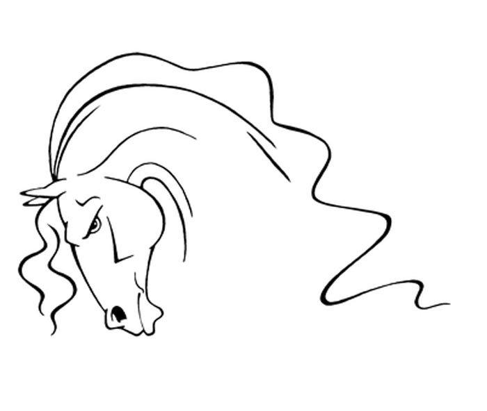 imagem de cabeça de cavalo para colorir