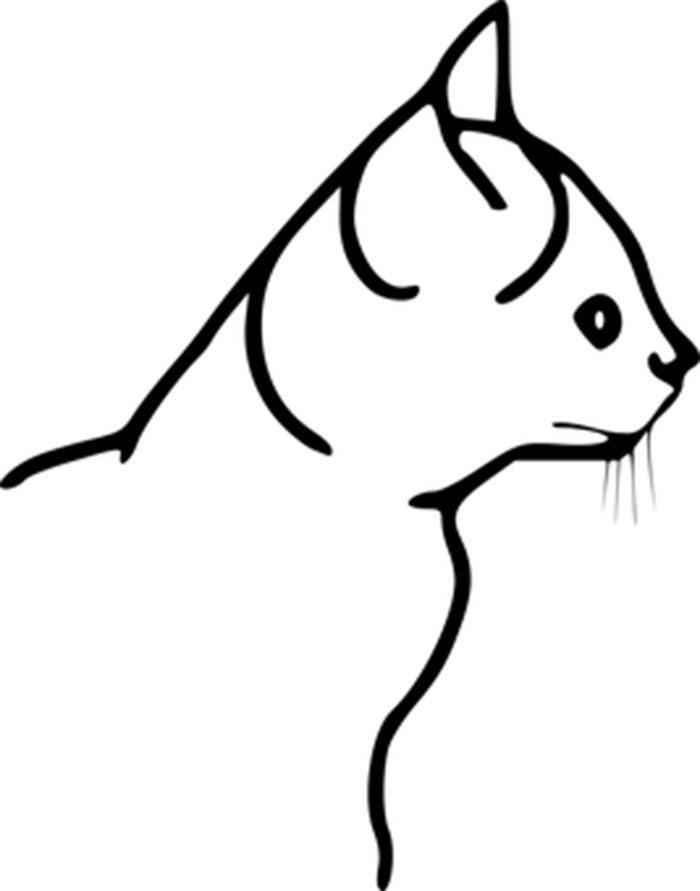 Imagem gato para colorir