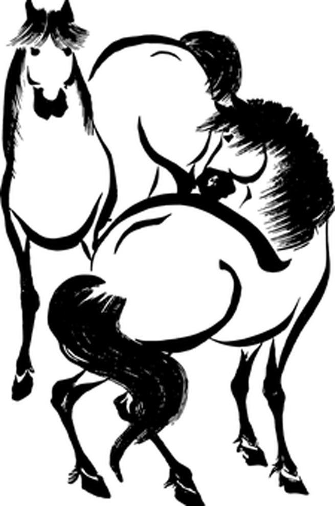 imagens de cavalos de raca para colorir