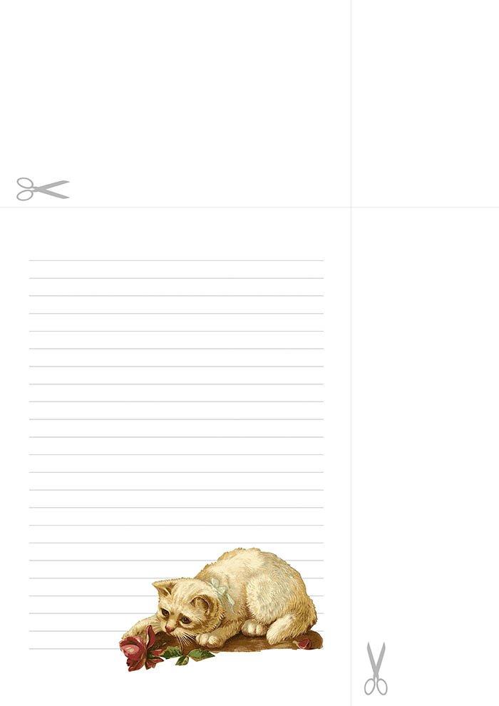 Papel de carta com linha decorado gato