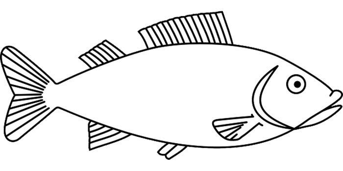 Peixe imprimir colorir