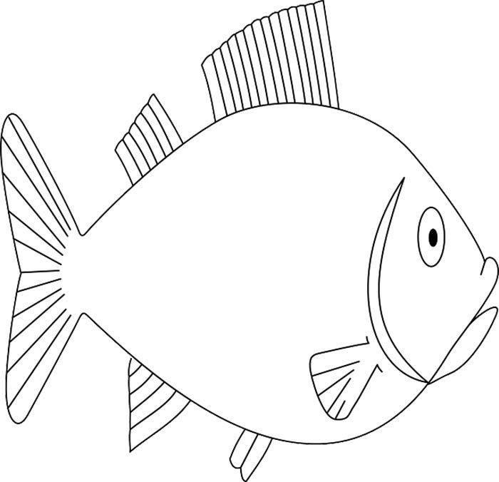 Peixe largo para colorir