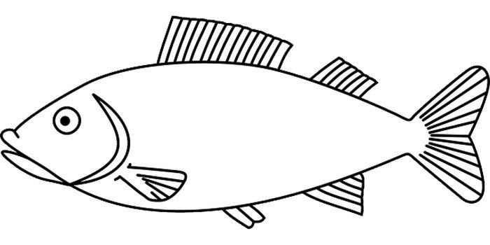 Peixe para colorir