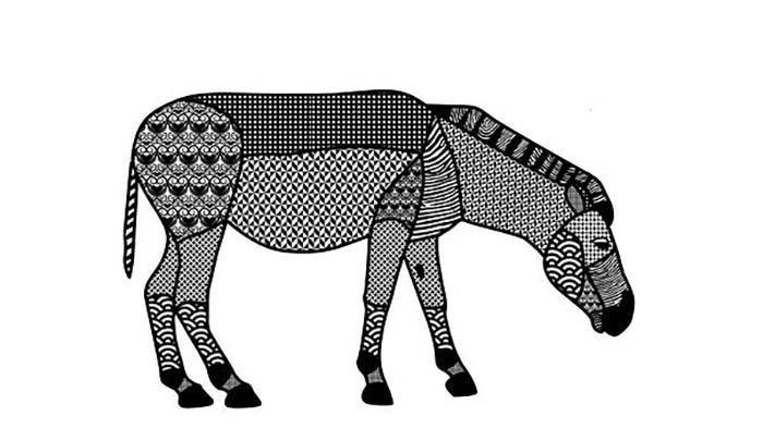 Zebra colorir