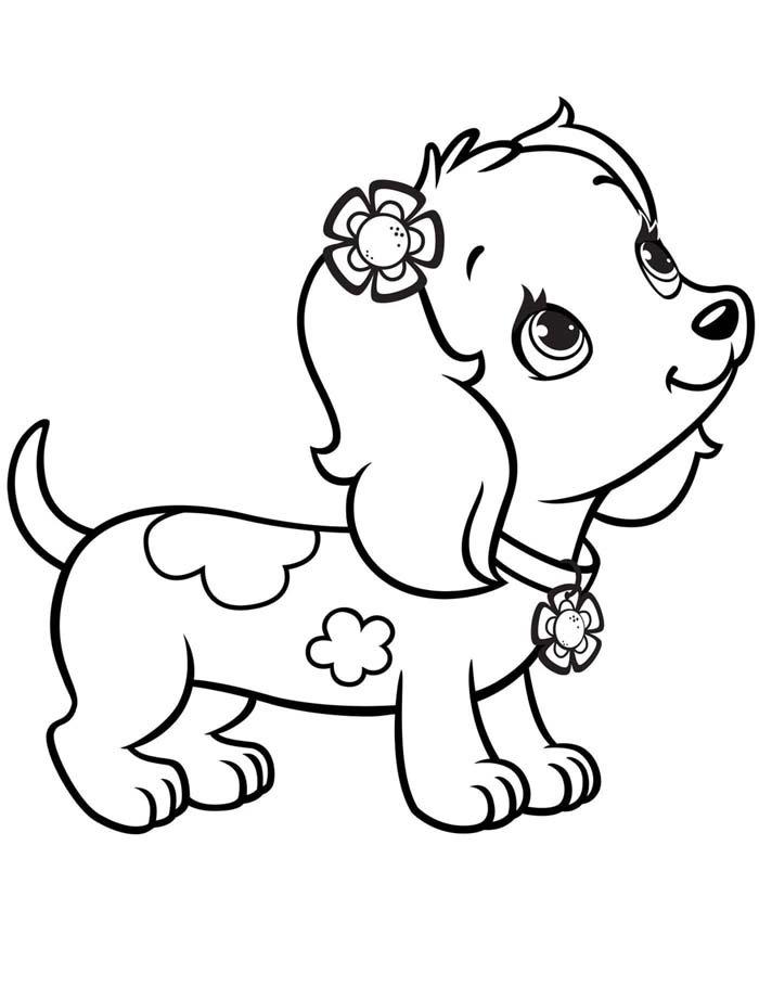 cachorrinha meiga