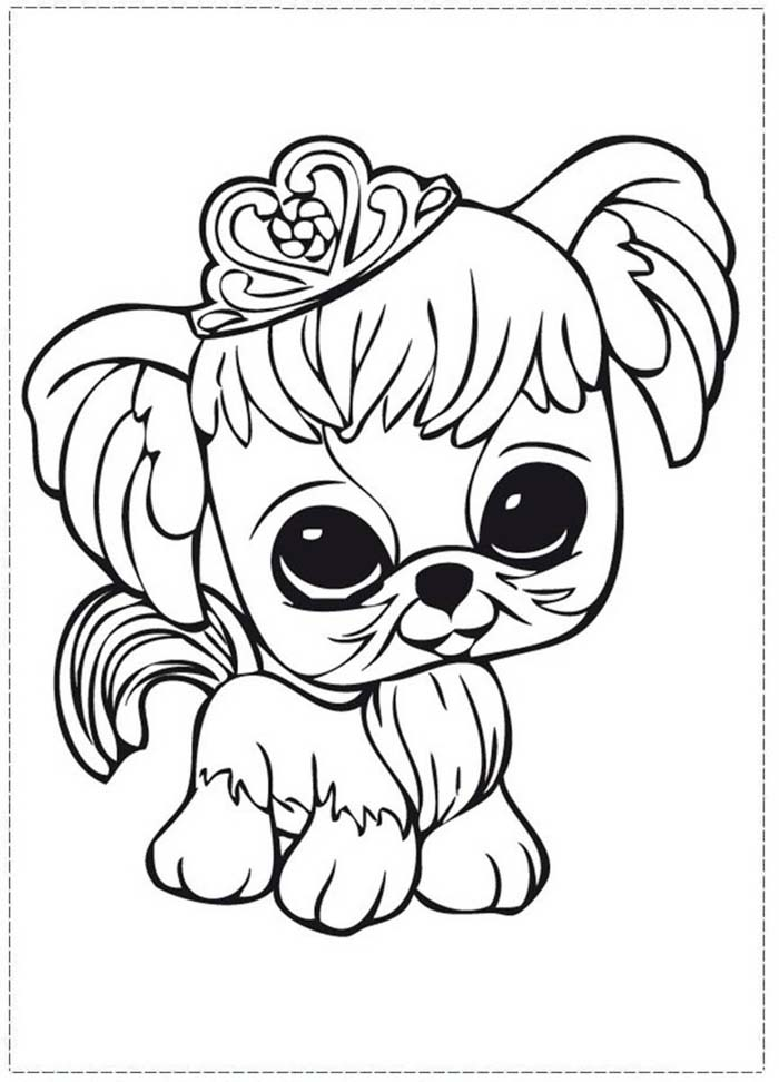 cachorrinha tiara princesa