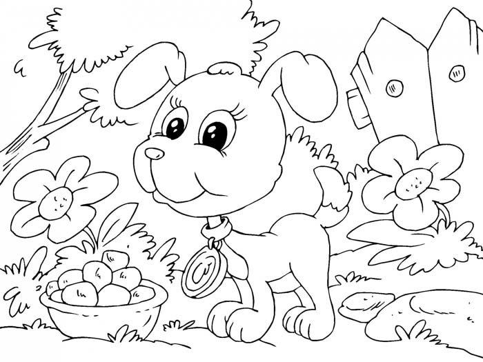 cachorrinho na floresta