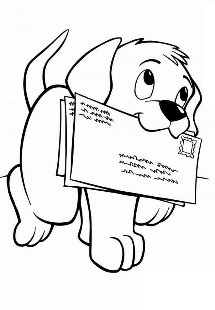 cachorro com cartas na boca