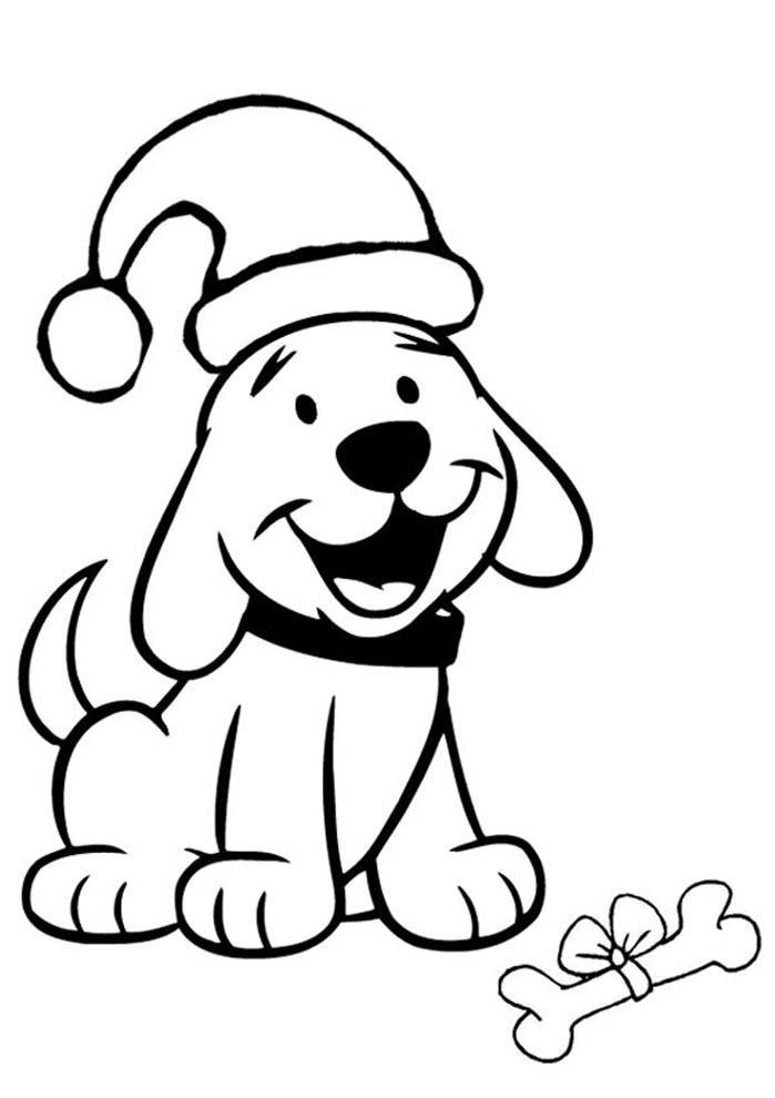 cachorro com chapéu de papai noel