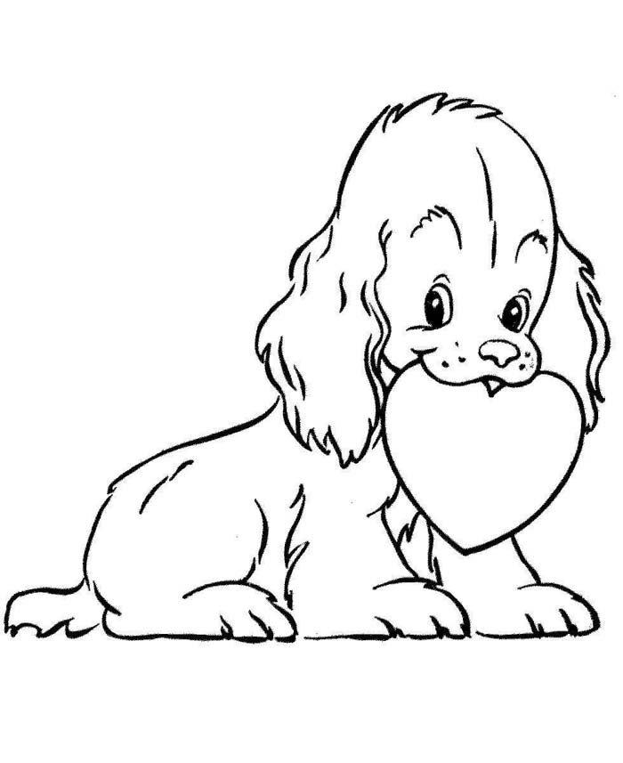 cachorro com coração na boca