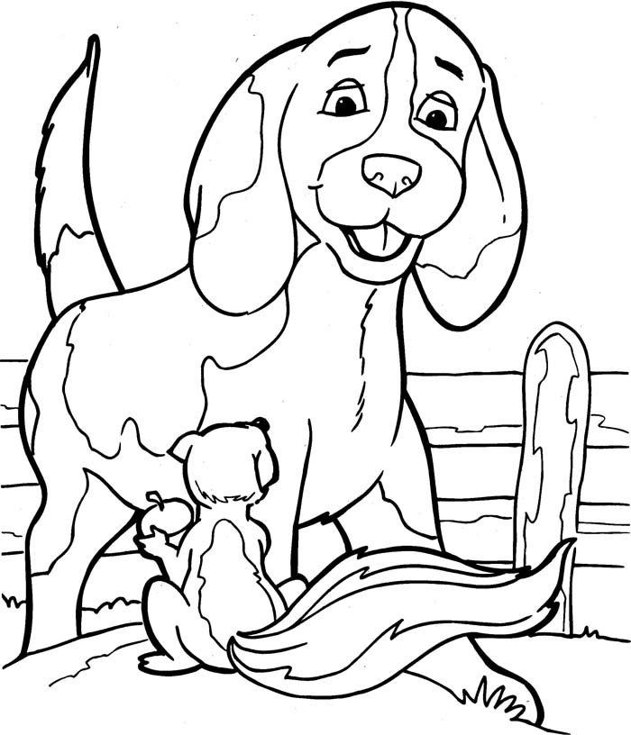 cachorro e esquilo