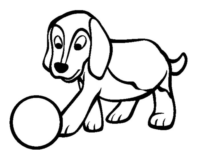 cachorro jogando bola