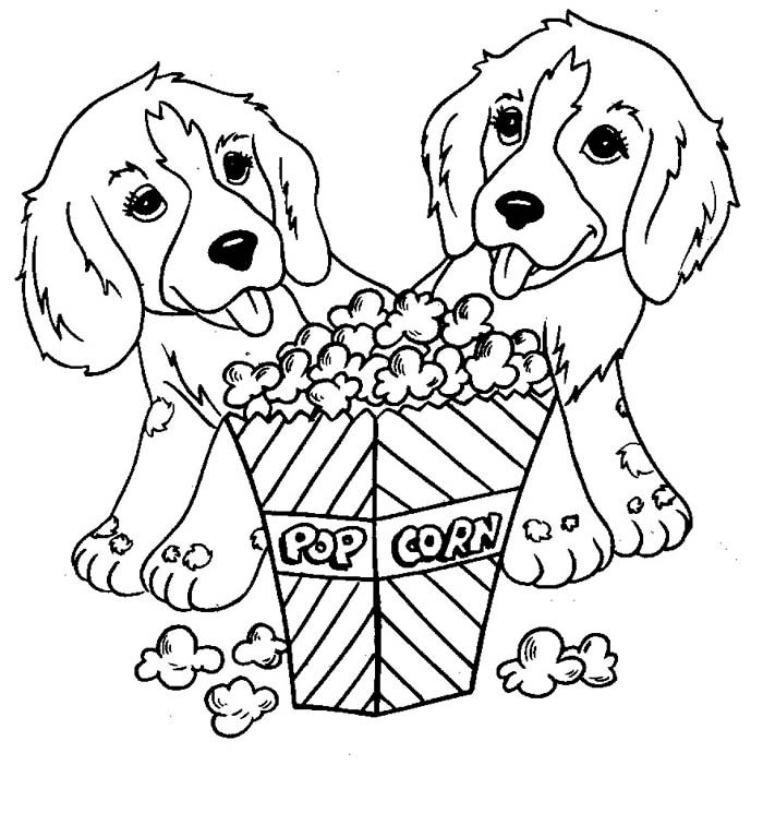cachorros comendo pipoca