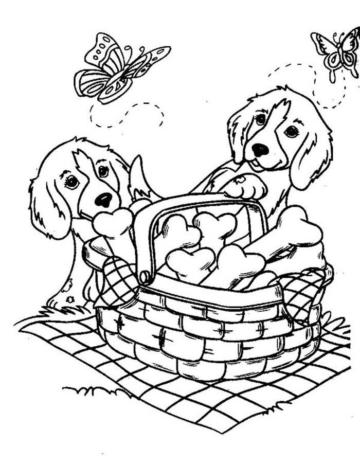 cachorros fazendo pic nic