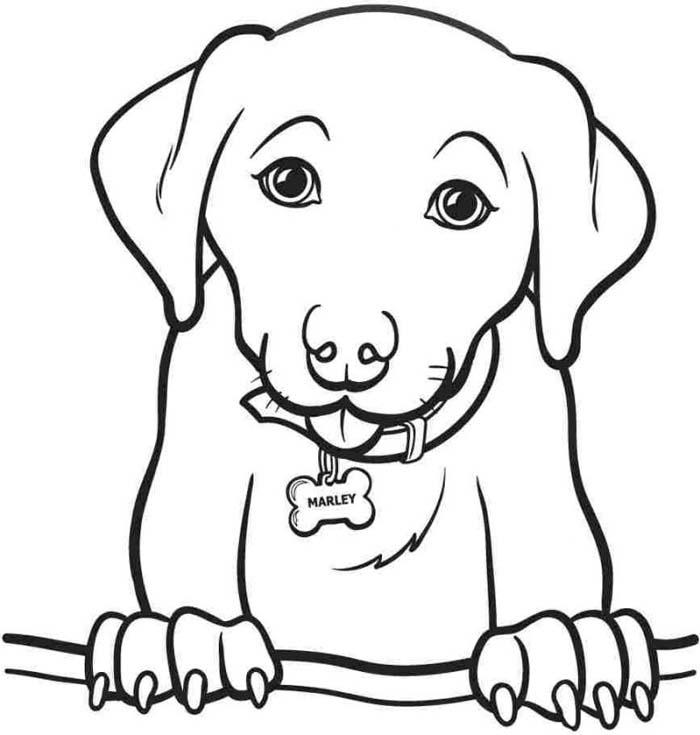 desenho de cachorro com as patas para cima