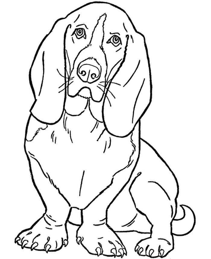 desenho de cachorro grande