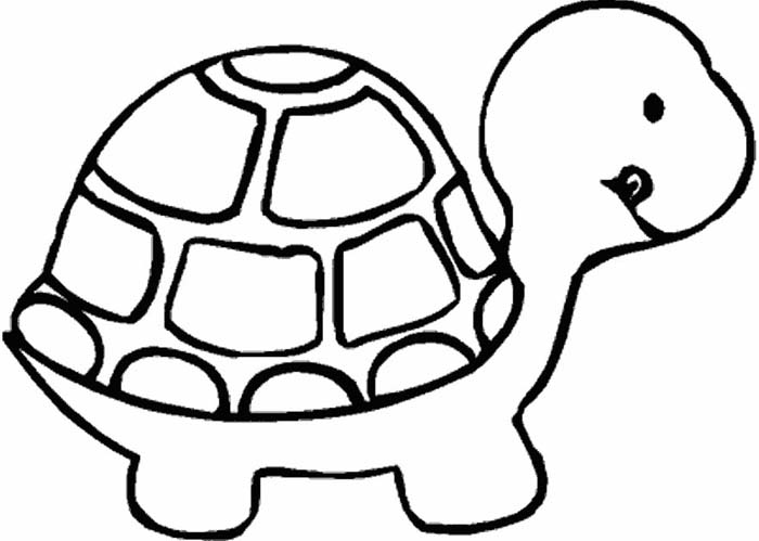 desenho de tartaruga para colorir infantil