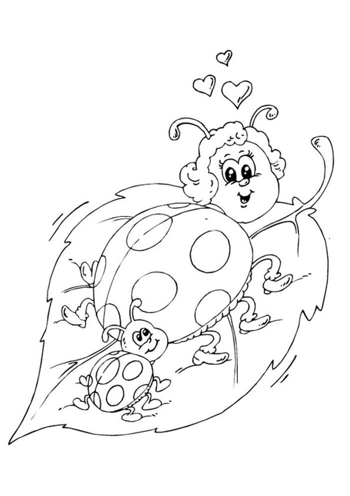 desenho ladybug colorir