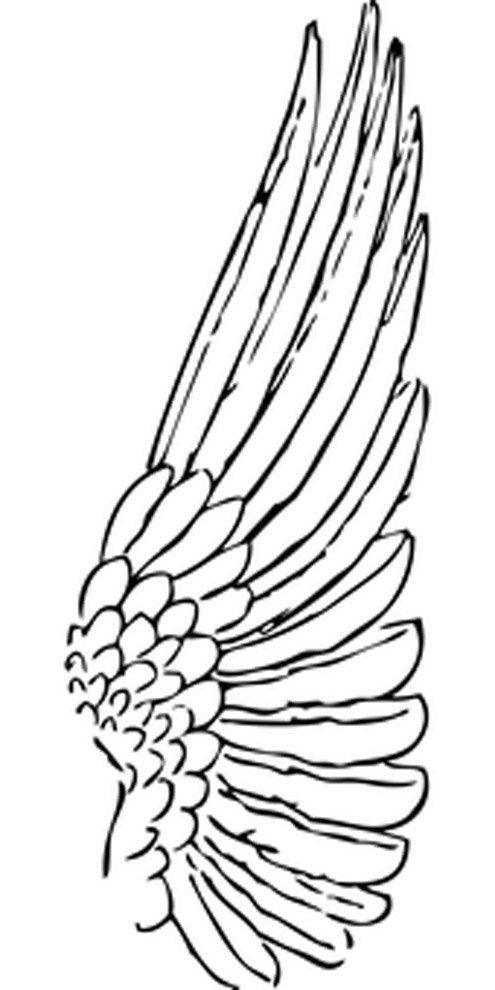 desenho para colorir de asa de anjo