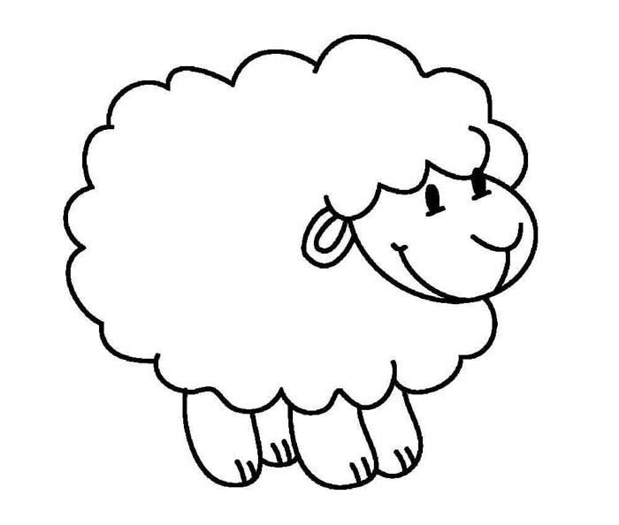 desenho para colorir de ovelha para criança