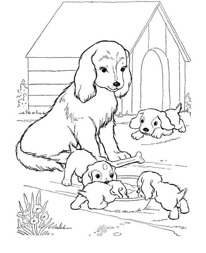 familia de cachorros