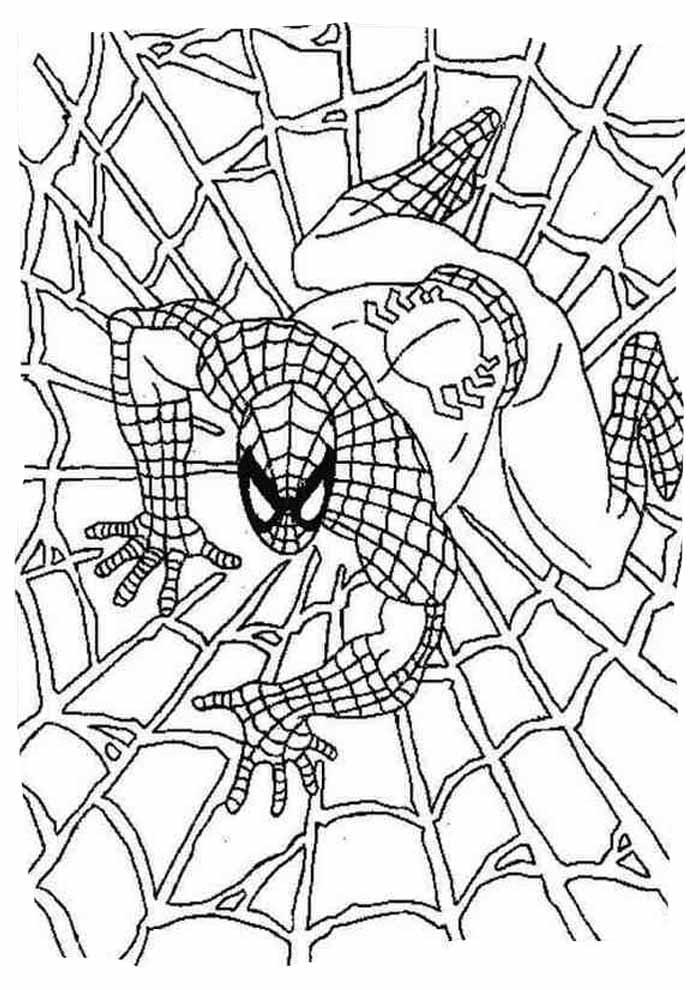 homem aranha para colorir 10