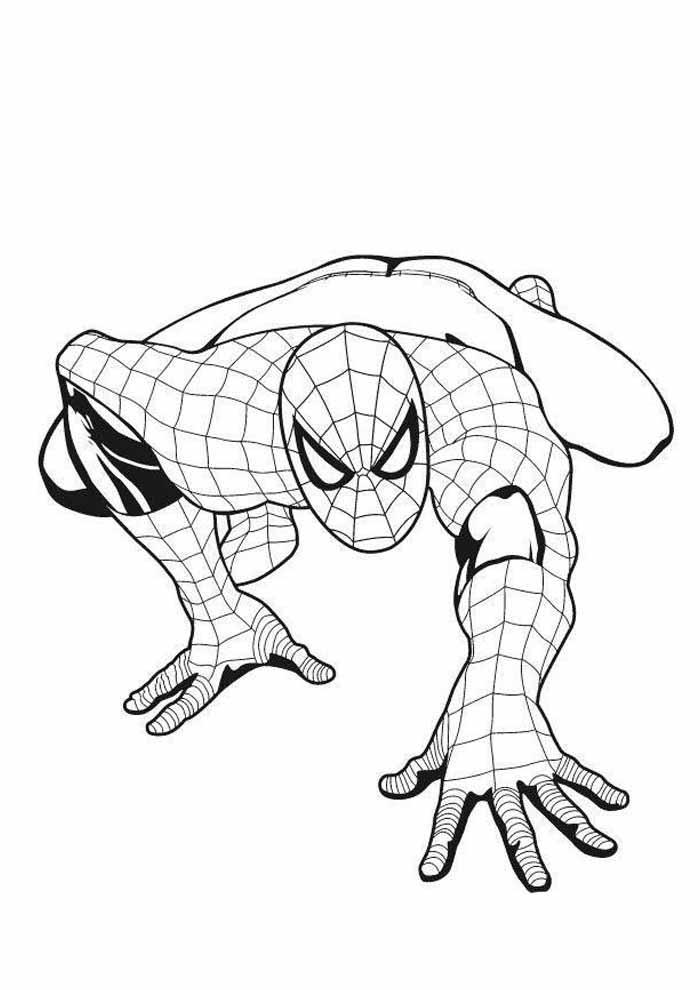 homem aranha para colorir 22