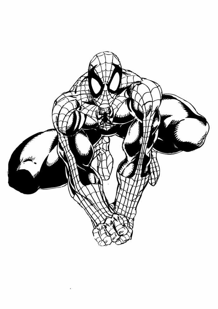 homem aranha para colorir 27