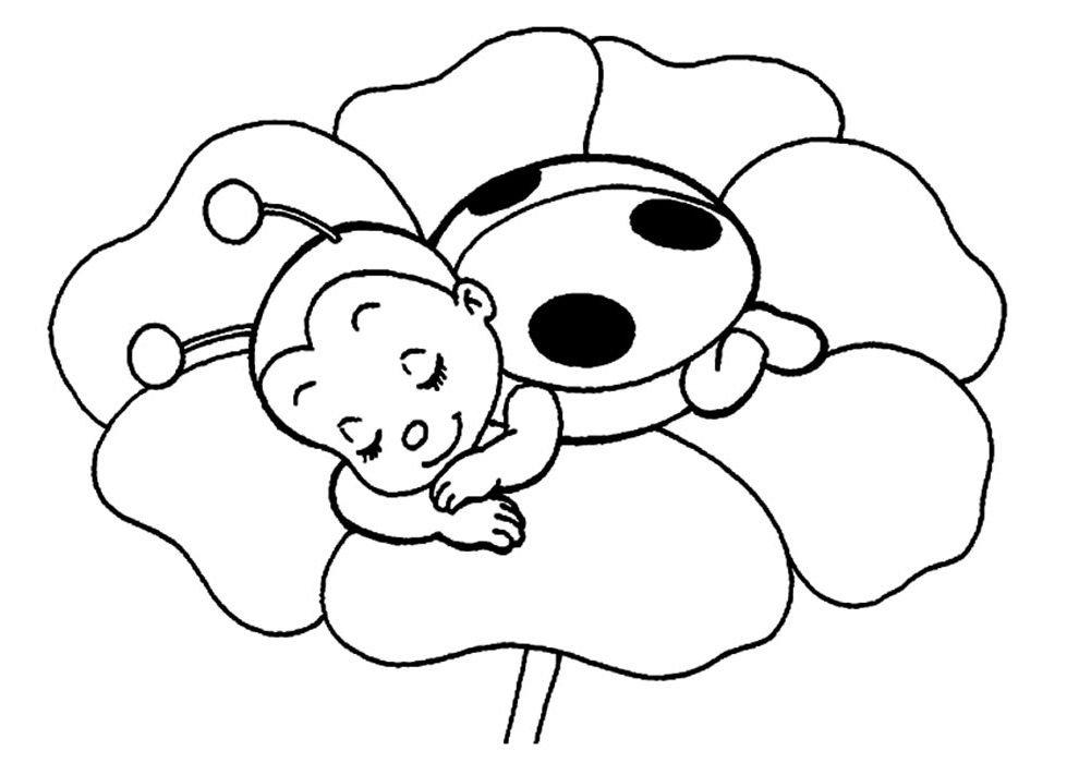 ladybug desenho para colorir