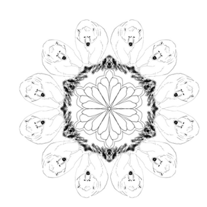 mandala de ursos