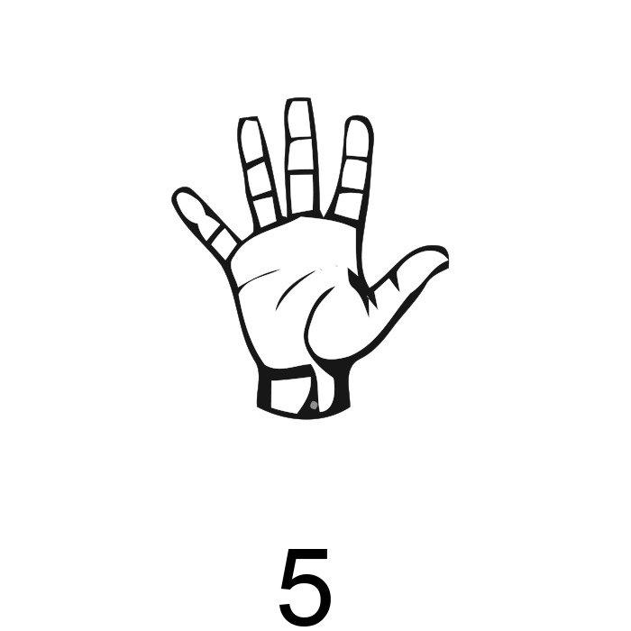 números em libras 5
