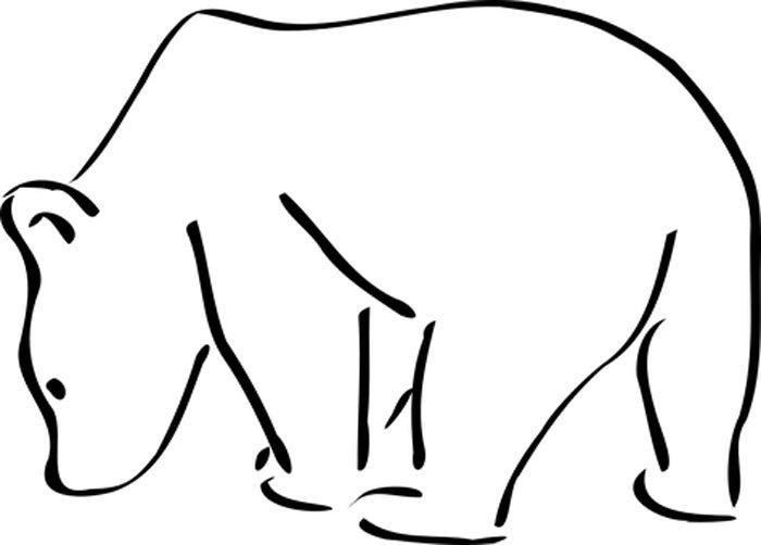 urso branco grande