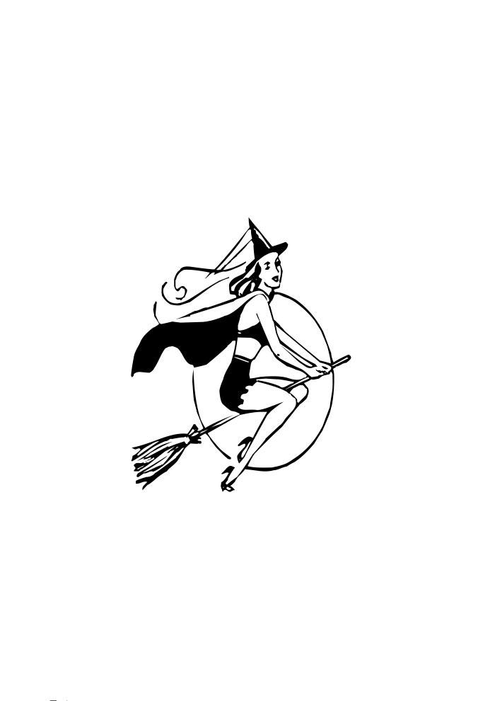 bruxa vassoura voadora