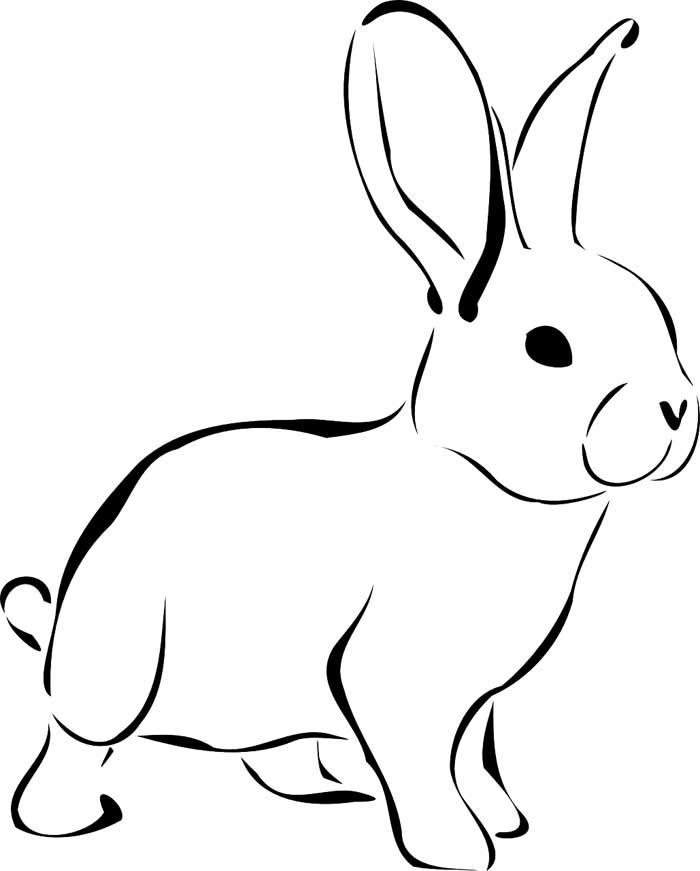 Desenhos De Coelho Para Imprimir E Colorir Desenhos Para Colorir