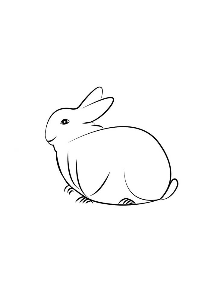 coelho para colorir 14