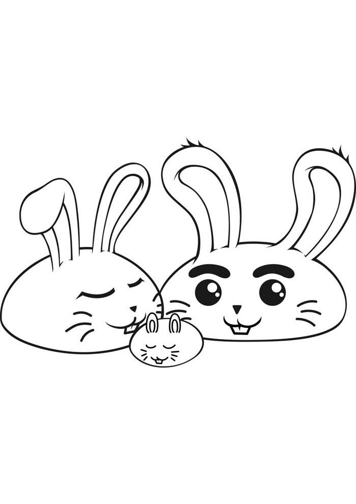 coelho para colorir 21