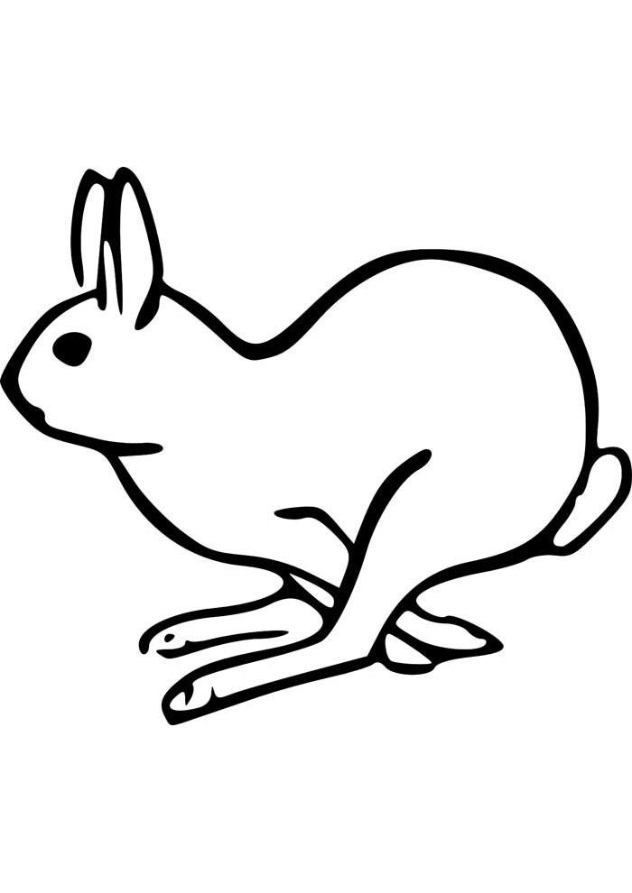 coelho para colorir 23