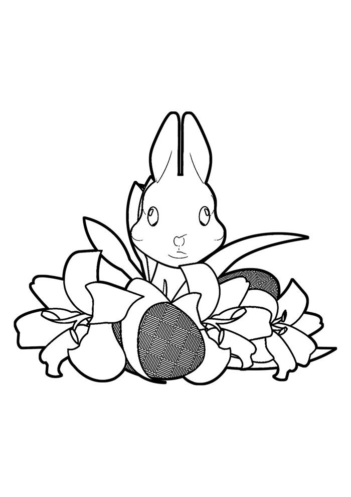 coelho para colorir 33