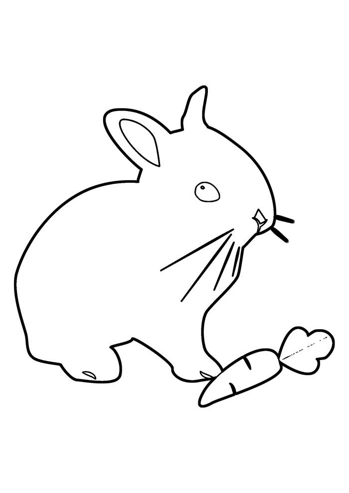 coelho para colorir 35