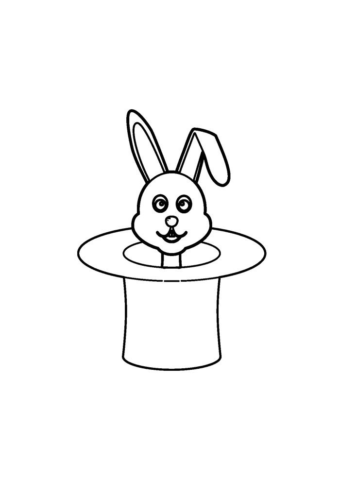 coelho para colorir 37