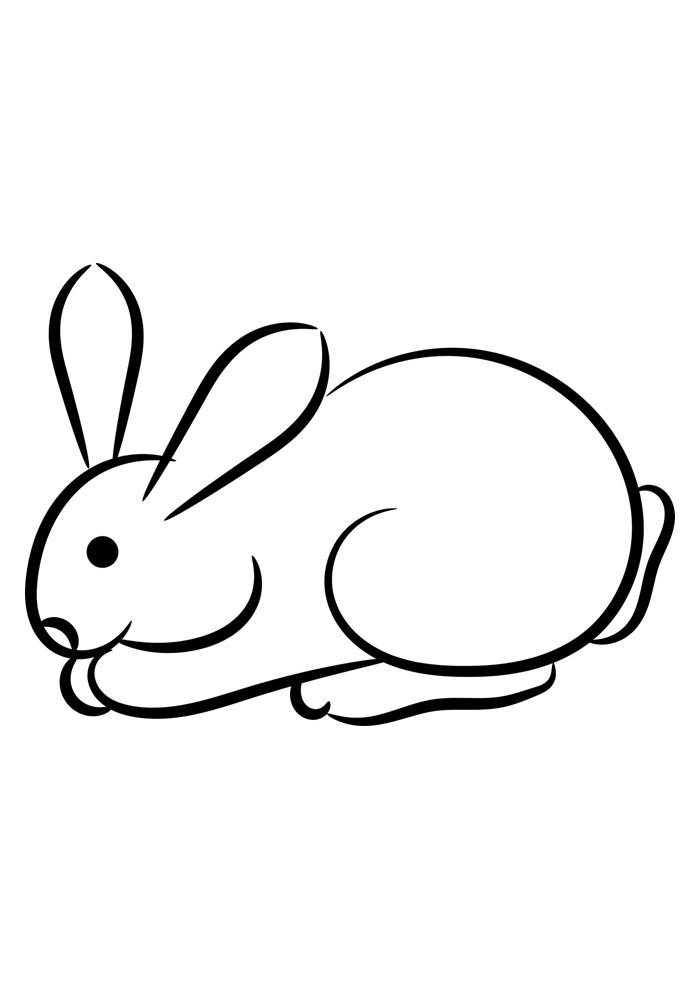 coelho para colorir 39