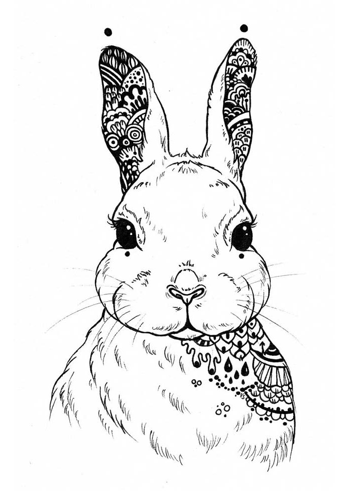 coelho para colorir 40