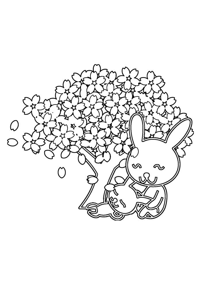 coelho para colorir 53